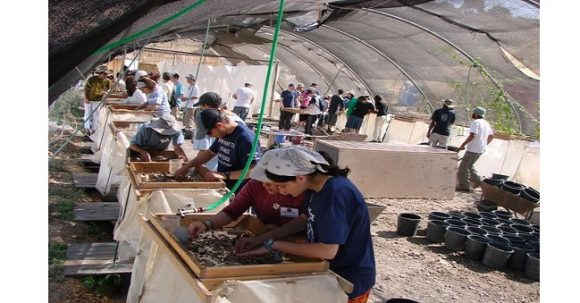 The Temple Mount Sifting Project (TMSP)