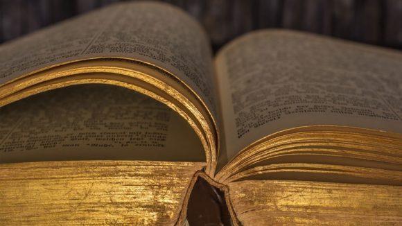Ingångsporten till den bibliska staden Zer har upptäckts